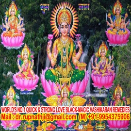 vedic astrology tantra solutions by worlds no 1 astrologer tantrik vastu expert numerologist
